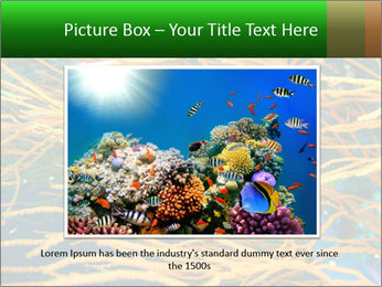 0000073071 PowerPoint Templates - Slide 15
