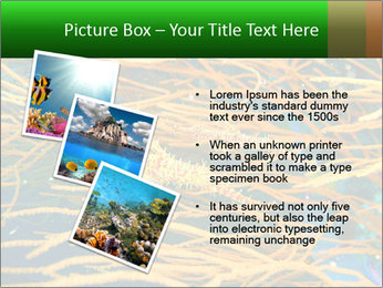 0000073071 PowerPoint Templates - Slide 17