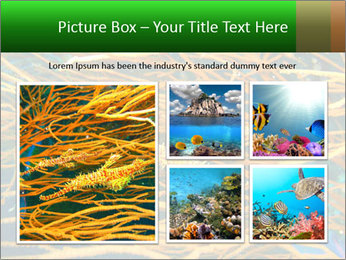 0000073071 PowerPoint Template - Slide 19
