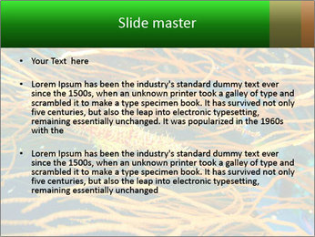 0000073071 PowerPoint Templates - Slide 2