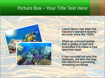 0000073071 PowerPoint Template - Slide 20
