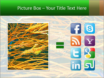 0000073071 PowerPoint Templates - Slide 21