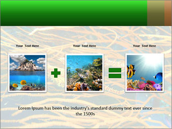 0000073071 PowerPoint Templates - Slide 22