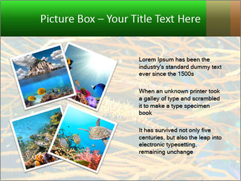 0000073071 PowerPoint Templates - Slide 23
