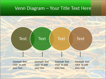 0000073071 PowerPoint Templates - Slide 32