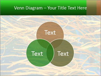 0000073071 PowerPoint Templates - Slide 33