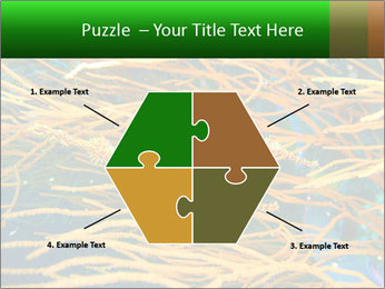 0000073071 PowerPoint Templates - Slide 40