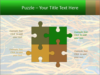 0000073071 PowerPoint Templates - Slide 43