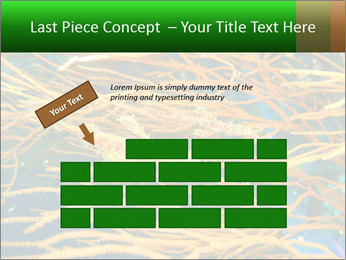 0000073071 PowerPoint Templates - Slide 46