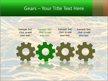 0000073071 PowerPoint Templates - Slide 48