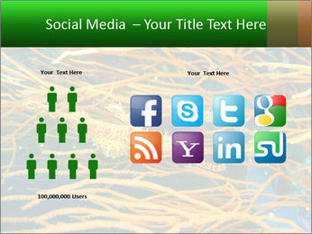 0000073071 PowerPoint Templates - Slide 5