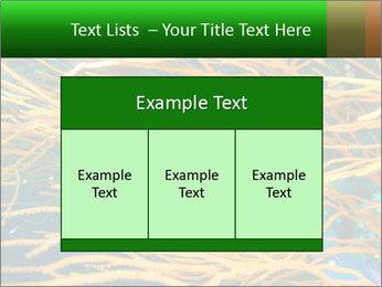 0000073071 PowerPoint Template - Slide 59