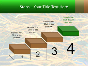 0000073071 PowerPoint Templates - Slide 64