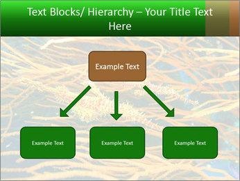 0000073071 PowerPoint Template - Slide 69