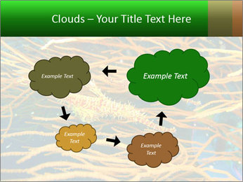 0000073071 PowerPoint Templates - Slide 72