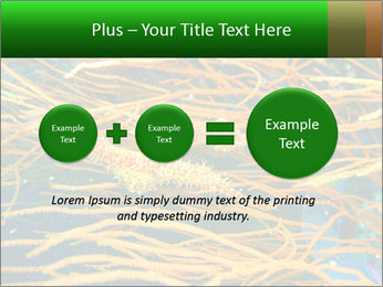0000073071 PowerPoint Templates - Slide 75