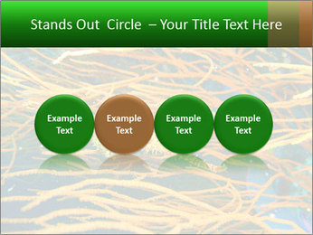 0000073071 PowerPoint Templates - Slide 76