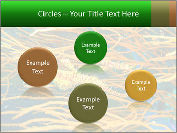 0000073071 PowerPoint Templates - Slide 77