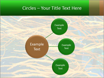 0000073071 PowerPoint Templates - Slide 79