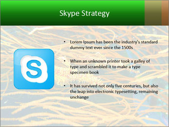 0000073071 PowerPoint Templates - Slide 8