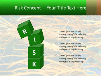 0000073071 PowerPoint Templates - Slide 81