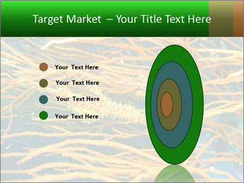 0000073071 PowerPoint Templates - Slide 84