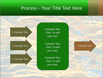 0000073071 PowerPoint Templates - Slide 85