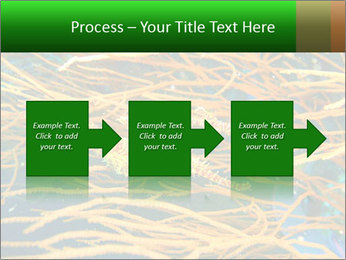 0000073071 PowerPoint Templates - Slide 88