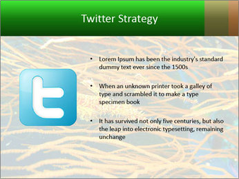 0000073071 PowerPoint Templates - Slide 9