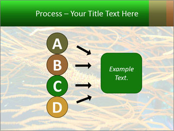 0000073071 PowerPoint Templates - Slide 94
