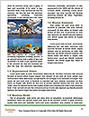 0000073071 Word Templates - Page 4