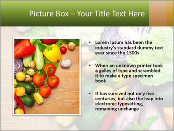 0000073072 PowerPoint Templates - Slide 13