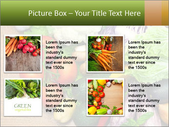 0000073072 PowerPoint Templates - Slide 14