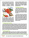 0000073075 Word Template - Page 4