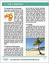 0000073077 Word Template - Page 3
