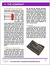0000073093 Word Template - Page 3