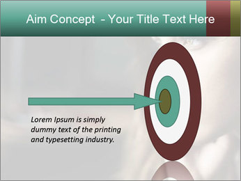 0000073095 PowerPoint Template - Slide 83