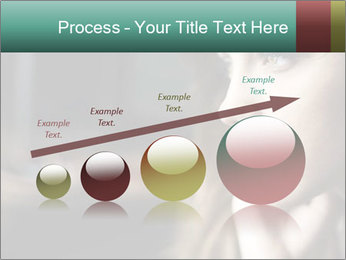 0000073095 PowerPoint Template - Slide 87