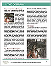 0000073095 Word Template - Page 3