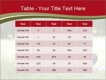 0000073096 PowerPoint Templates - Slide 55