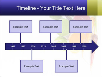 0000073106 PowerPoint Template - Slide 28