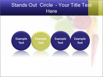 0000073106 PowerPoint Template - Slide 76