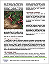 0000073109 Word Template - Page 4