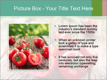 0000073137 PowerPoint Templates - Slide 13