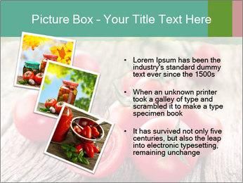 0000073137 PowerPoint Template - Slide 17