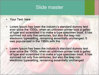 0000073137 PowerPoint Template - Slide 2
