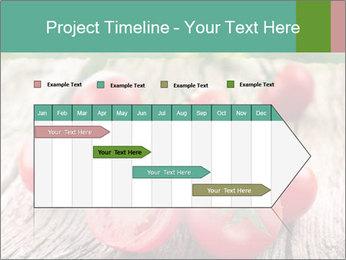 0000073137 PowerPoint Templates - Slide 25