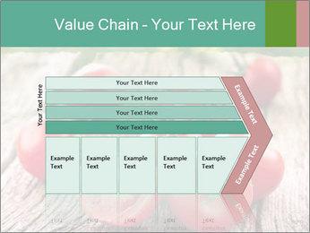 0000073137 PowerPoint Templates - Slide 27