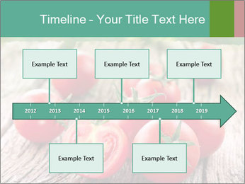 0000073137 PowerPoint Templates - Slide 28