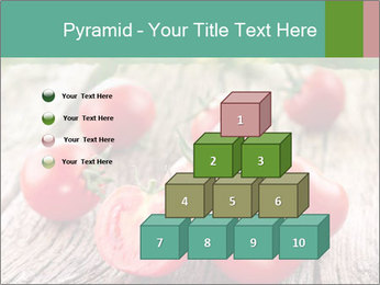 0000073137 PowerPoint Templates - Slide 31